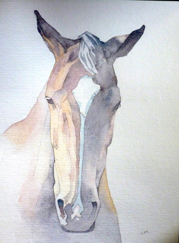 Horse.30x40cmWeb