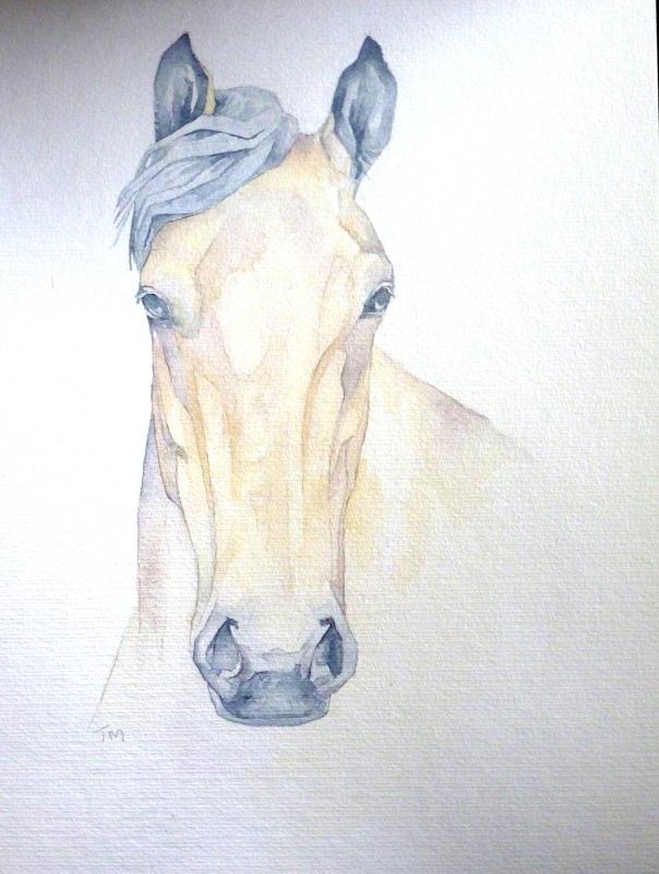 Pony.30x40cmWeb
