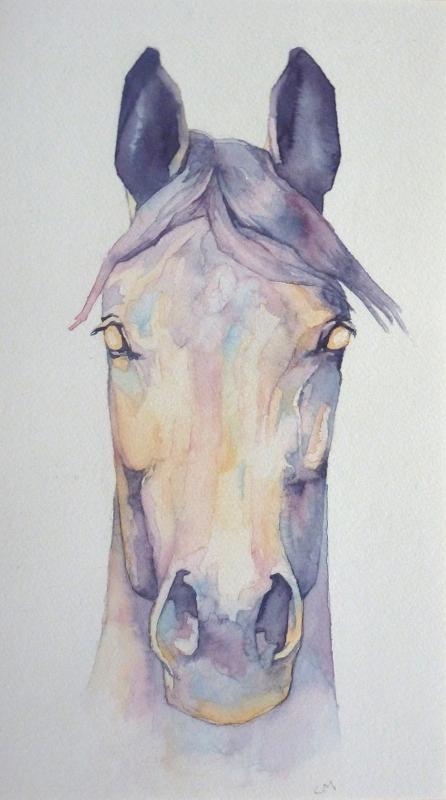Pony.wcol_.20x36cmWeb
