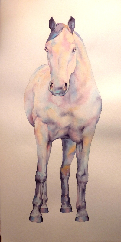 The-Horse-2.wcol-37x76cmWeb